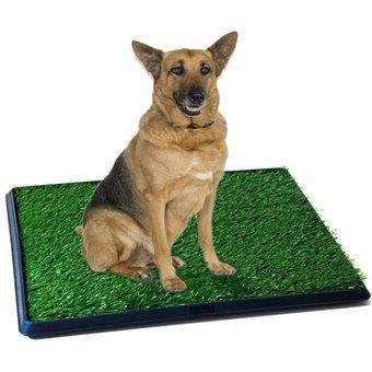 Baño Ecologico Para Perros Grandes Mascotas