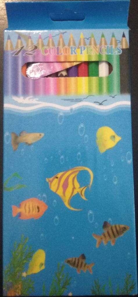Caja de 12 Lápices Largos de Colores