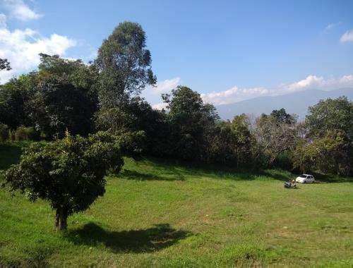 Venta de Lote Loma del Chocho Envigado - wasi_995523
