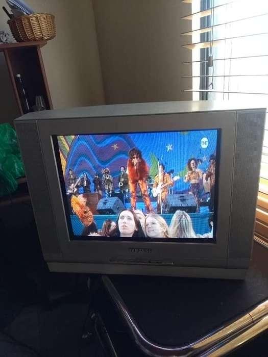 Vendo televisor Samsung de 21 pulgadas, con control original