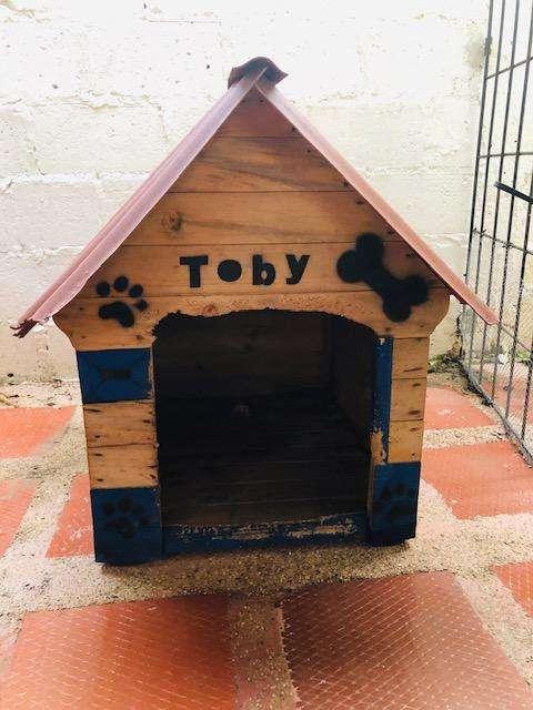 Casa Perro Mediano usada