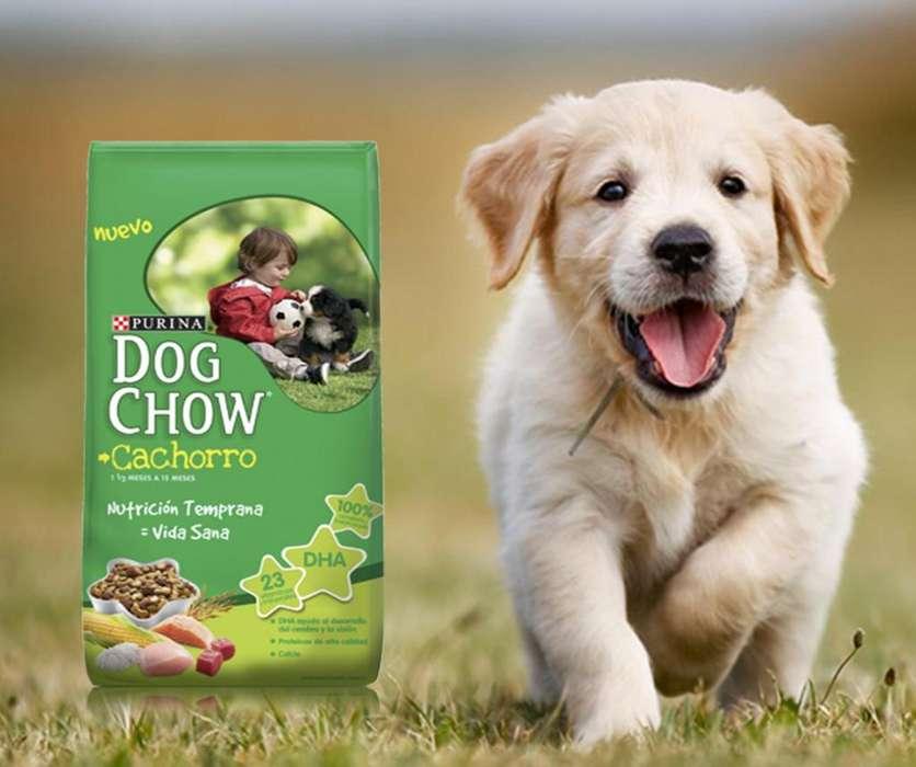 Dog Chow Cachorro 22.7 Kg Raza Grande