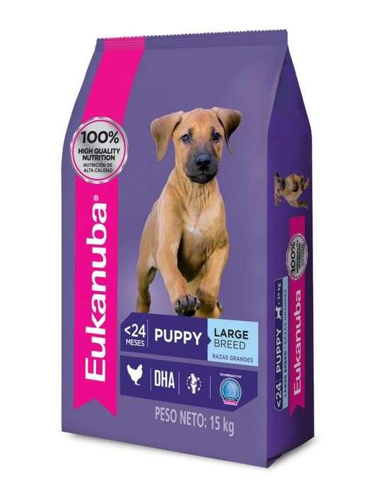 Eukanuba Large Puppy 15 Kg O F E R T A