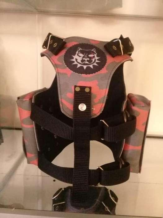 Pecheras collares cadenas bozales personalizados reforzados regulables