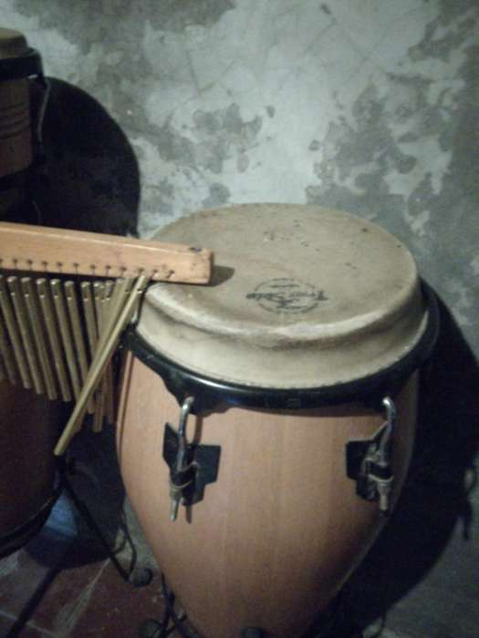 Vendo Congas, Bongoes