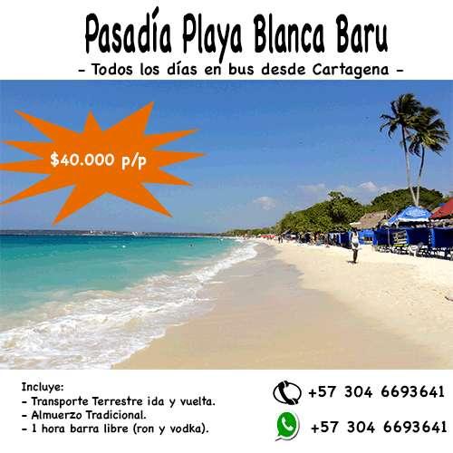 Tour Pasadía a Playa Blanca Isla Barú 40.000
