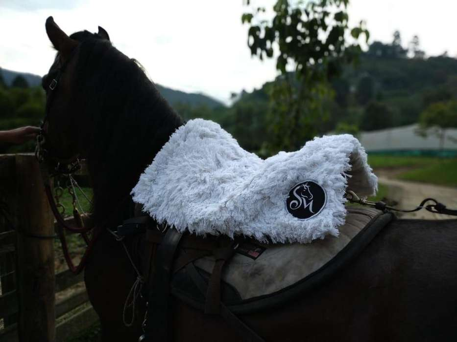 pellones personalizados bordados