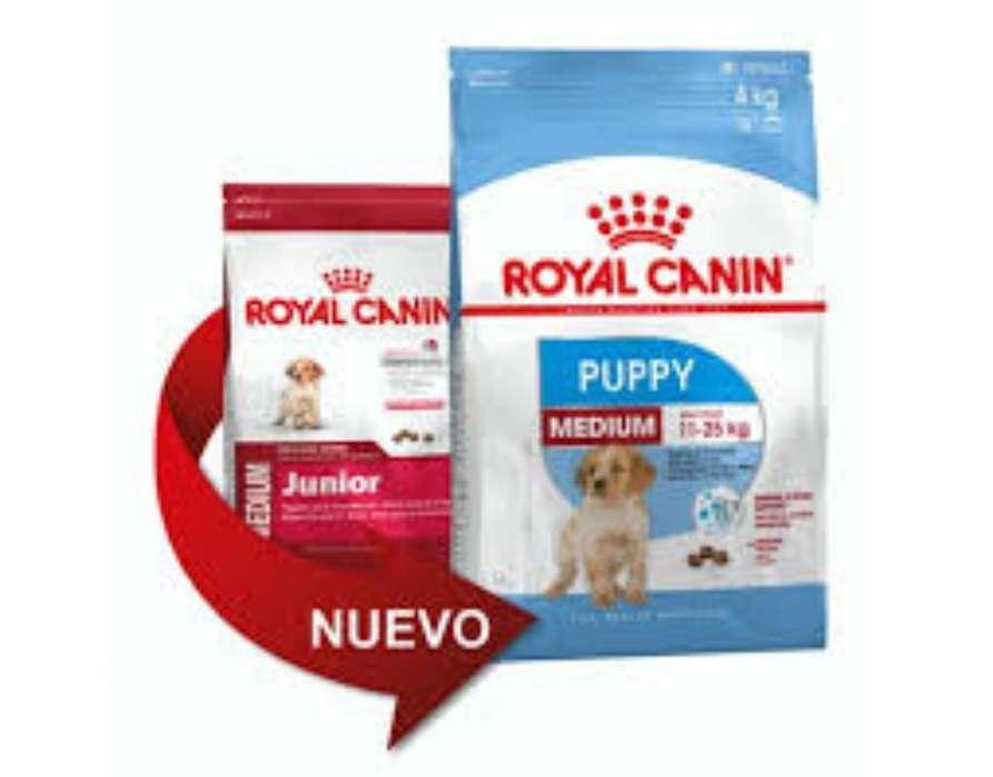 Royal Canin Médium Junior 15kg Medianos