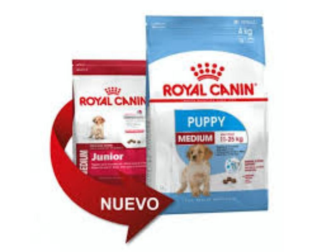 Royal Canin Médium Junior 15kg Medianos