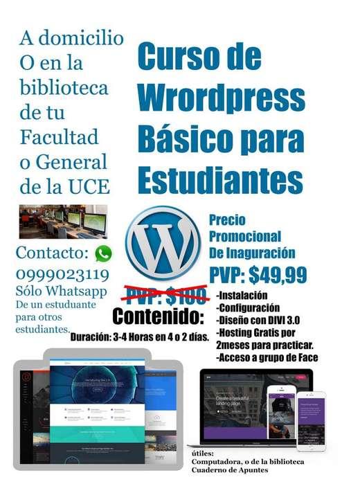 Curso de Wordpress Básico para Estudiantes- Muestra abajo