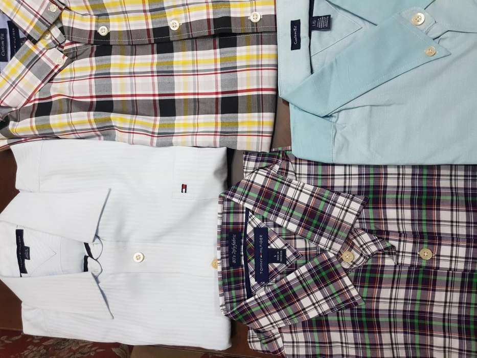 camisas tommy , lacoste , <strong>levis</strong> nuevas todas talle L
