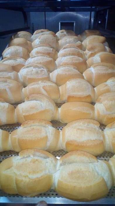 Vendo Pan para Reventa 3764186825