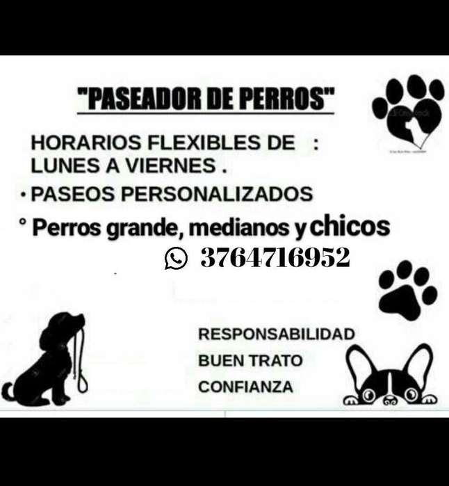 Paseador De. Perros