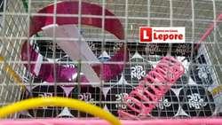 Jaula Chico Hamstera Hamster Entre Piso Rueda Ejercitadora VIRUTA 30x19x22