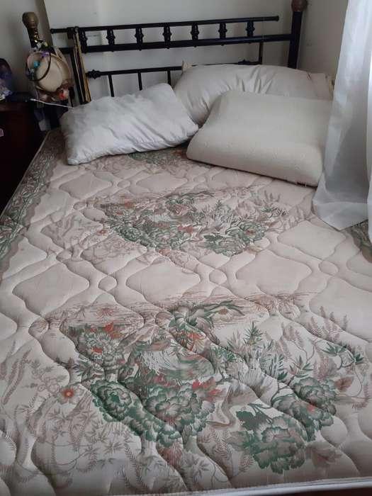 Venta Solo El Colchón Mas 2 Almohadas