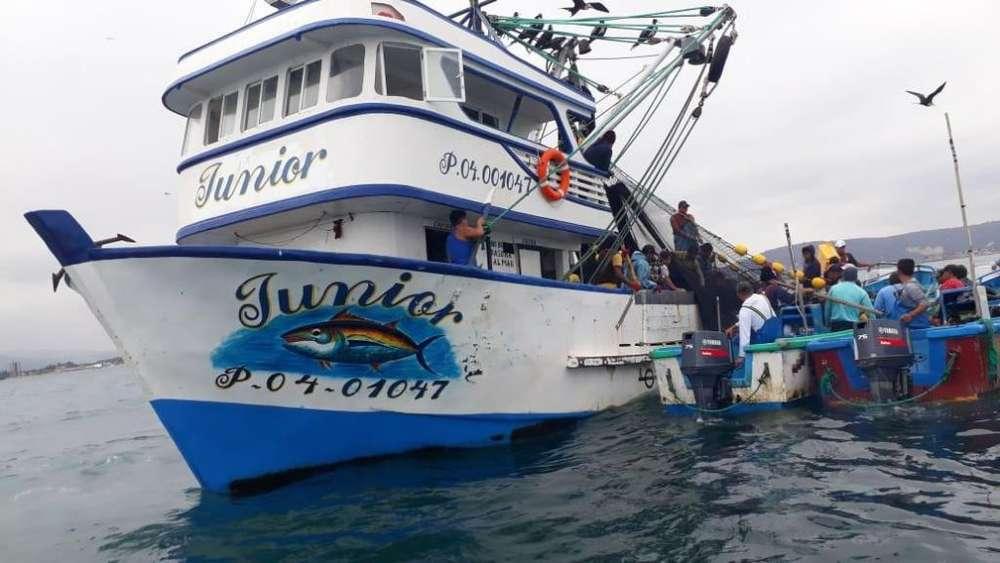 Barco Sardinero Nuevo modelo 2019 , listo para pescar