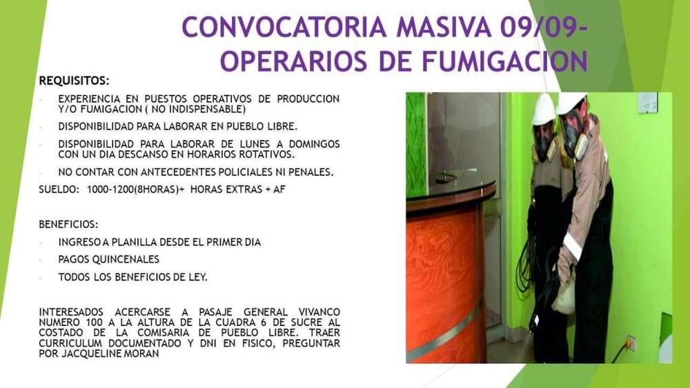 FUMIGADORES CON O SIN EXPERIENCIA- 1000/ PUEBLO LIBRE/ ALIMENTACION CUBIERTA