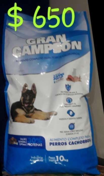 Alimento para Perro