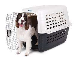 Vendo Guacal Pet Mate <strong>perrito</strong>s Medianos