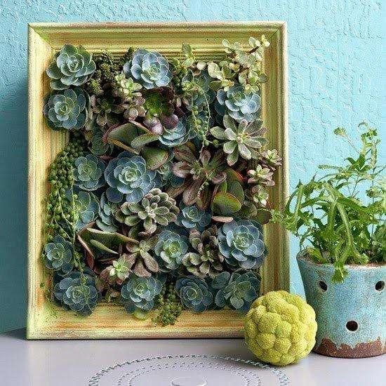Cuadro de Cactus a Medida