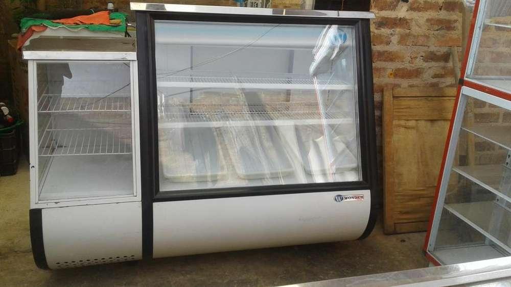 congelador vitrina exhibidor wonder
