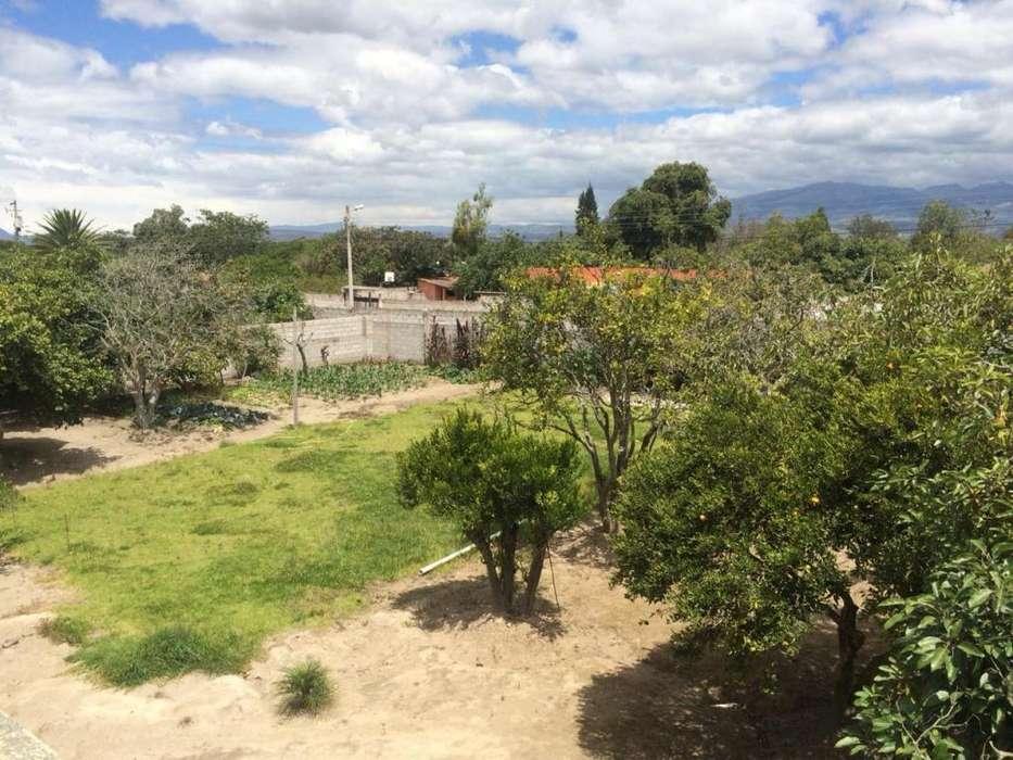 Quinta de venta en Guayabamba, 1800 metros de terreno