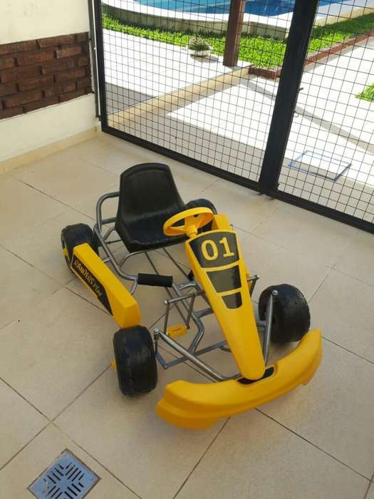 Carting a Pedal sin Uso Marca Randers