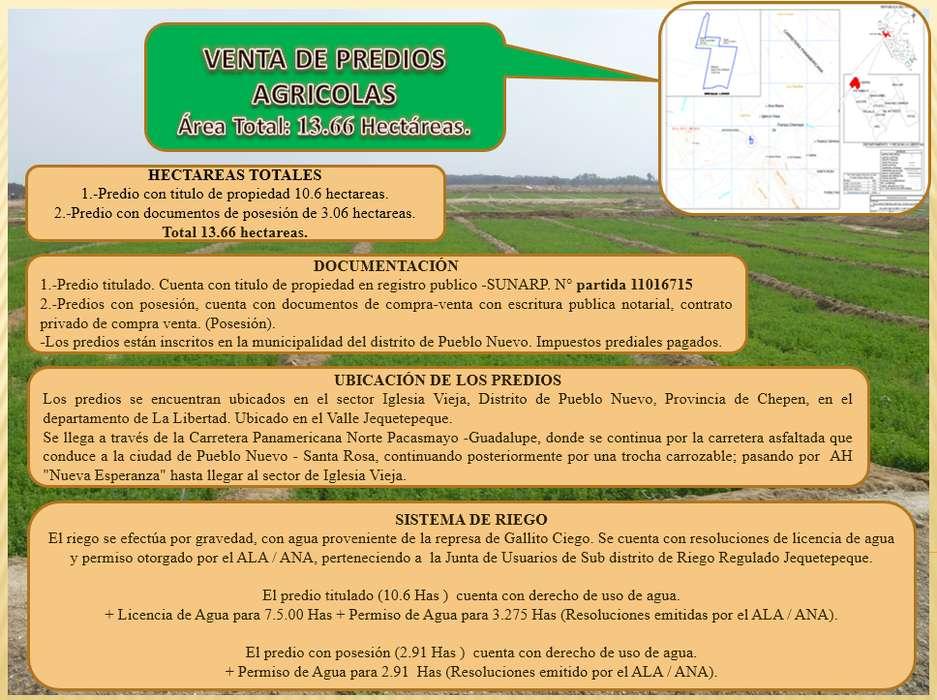 OCASIÓN - Venta de predio Agricola - Chepén - La Libertad