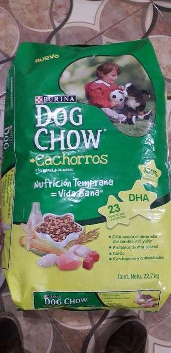 Dog Chow 22.7kg Cachorraza Mediana Y Gr