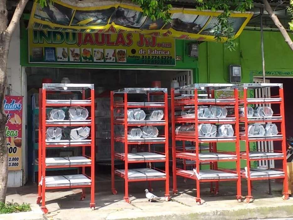 Vende Jaulas Pollos Pollos Reyes