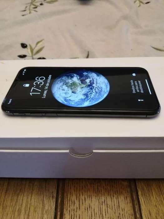 iPhone X 256gb Inmaculado en Garanta