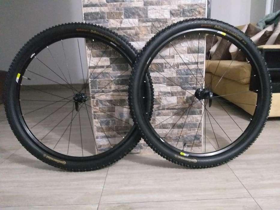 Rines 29 Mavic Crossone Bicicleta