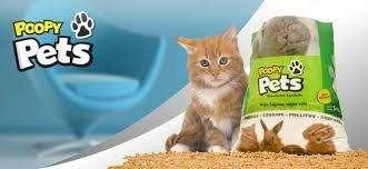 Piedritas poopy pets <strong>gato</strong>s cobayos