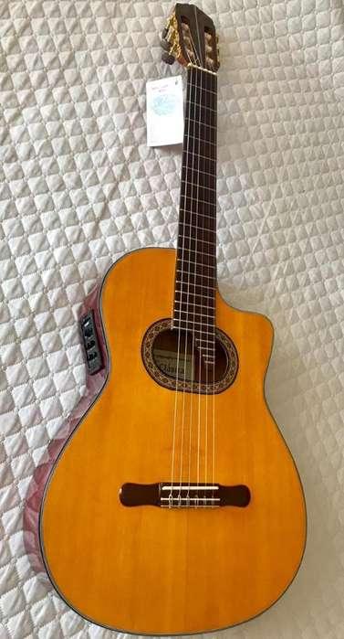 Guitarra Electroacústica Profesional