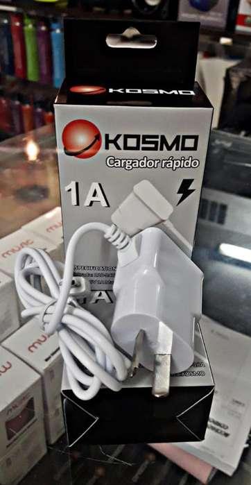 Cargador 1 Amper Kosmo
