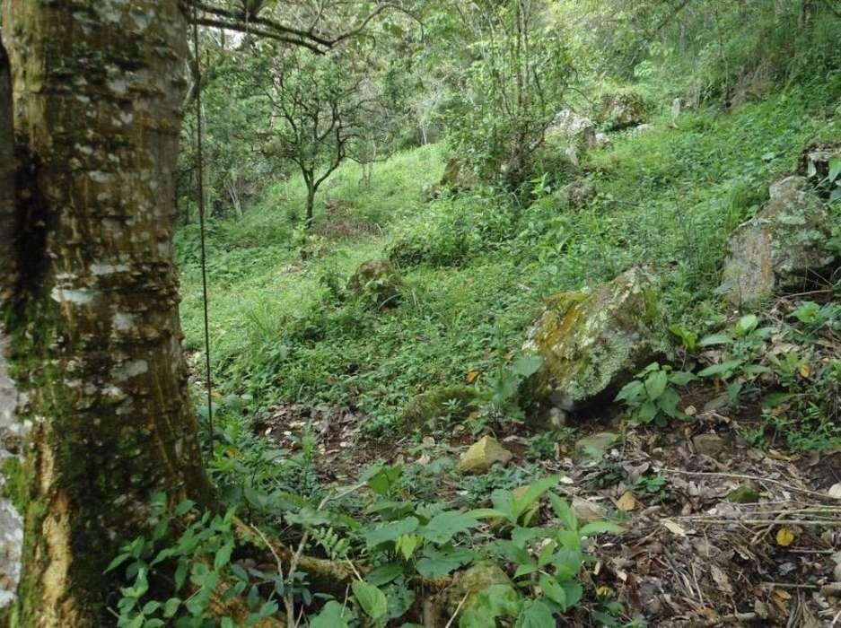 Finca en Pandi Cundinamarca