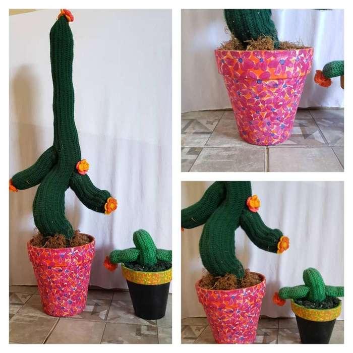 2 Captus Crochet Maceta