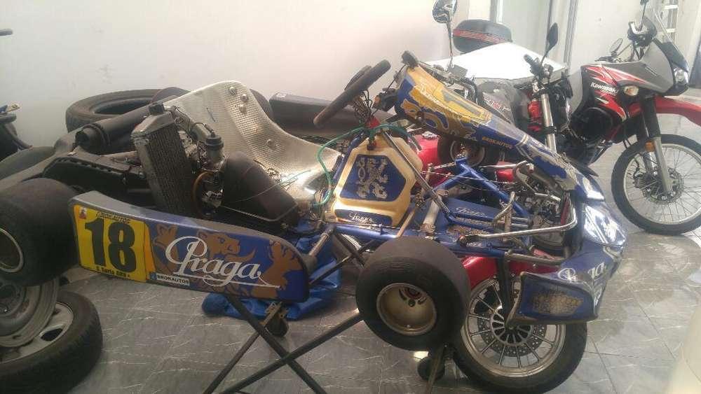 GO KART PRAGA KARTING 2014 POCO USO MOTOR ROTAX