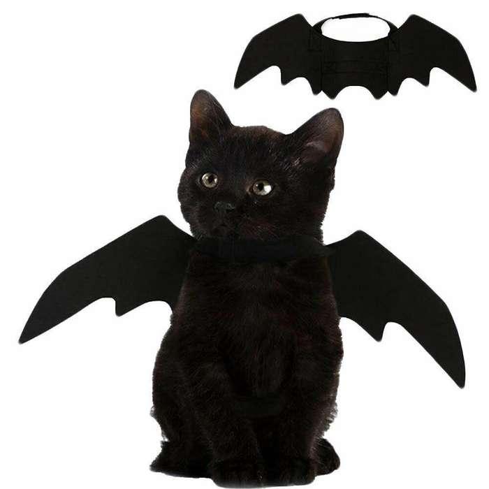 Alas Murcielago para gatos y perros pequeños y grandes disfraz halloween mascotas