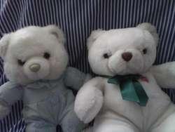 osos de peluche 150