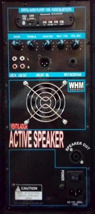Amplificador con Usb Y Ventilador