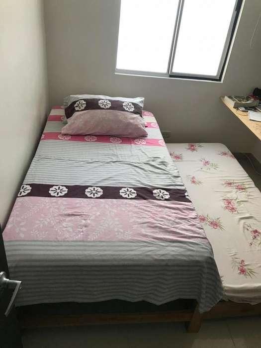 Cama Sencilla con cama auxiliar incluye colchon y colchoneta