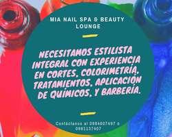 Se Busca Estilista Integral Quito Norte