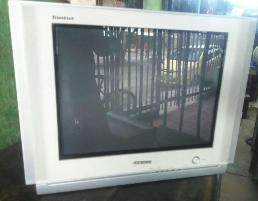 Vendo Tv Samsung 21 Pulgadas