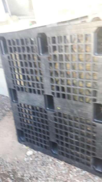 Pallets de Plastico Reforzados