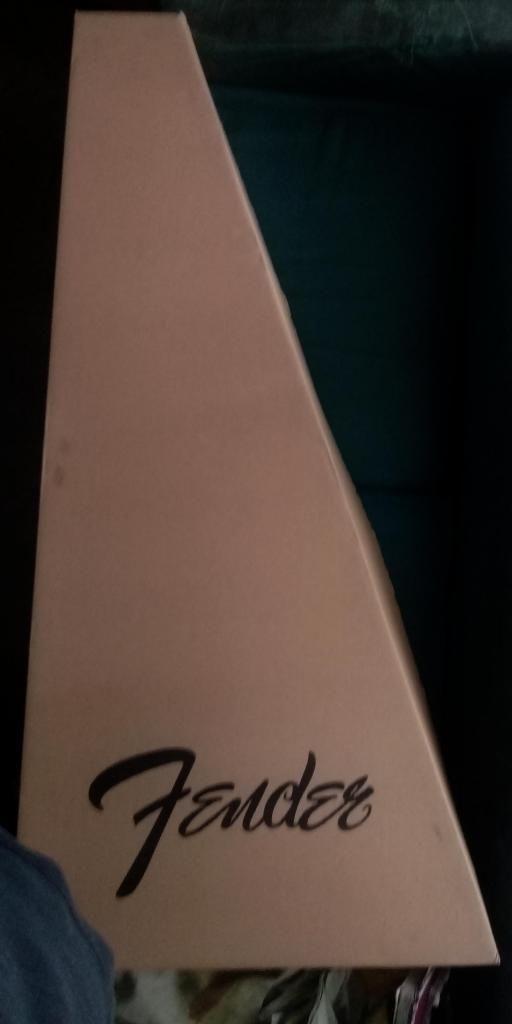 Fender acústica FA125