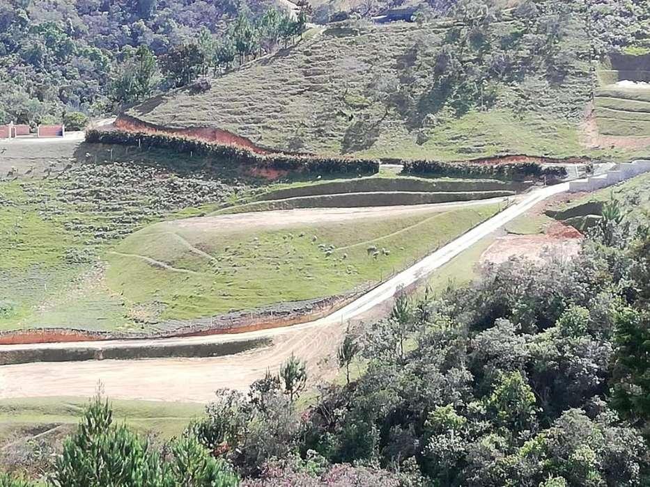 Lote Entrada al municipio de San Vicente