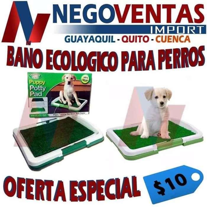 BAÑO ECOLÓGICO PARA PERROS OFERTA 10,00