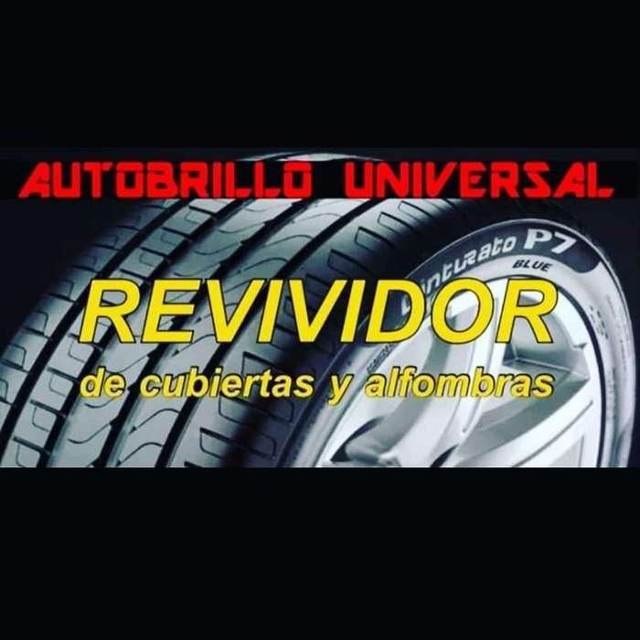 Autobrillo Universal Revividor de Neumát