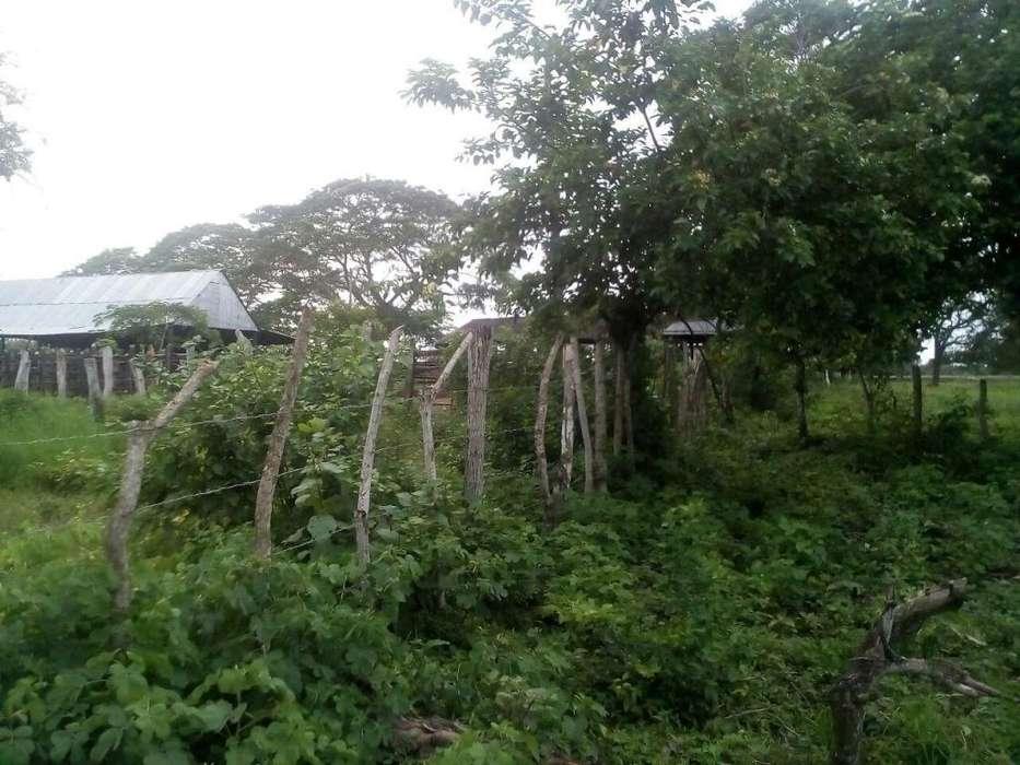 TURBACO, VENDOLOTE DE <strong>terreno</strong> APROVECHA OPORTUNIDAD